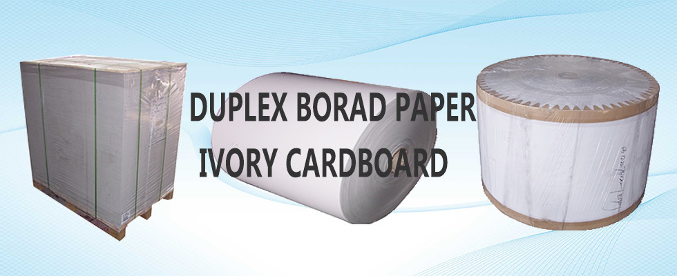 China best White Back Duplex Board on sales