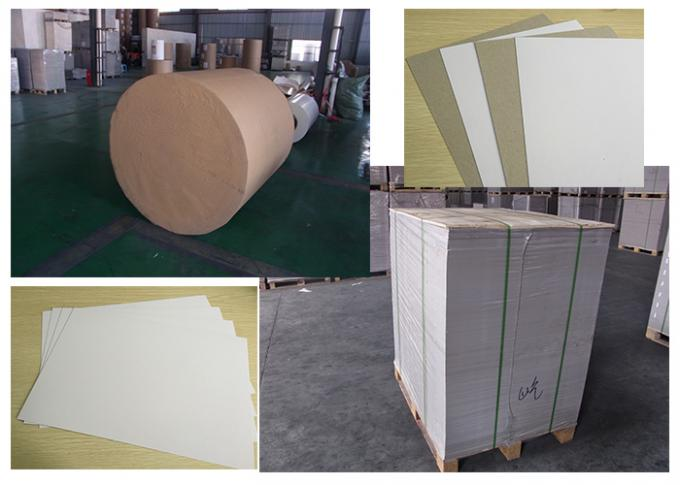 Roll And Sheets Type Grey Back Duplex Board Fbb Paperboard For Printing Industry