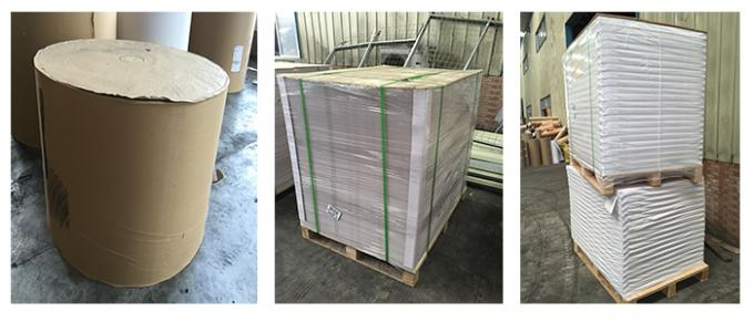 Recyled High Stiffness Blister Board Paper 250g For Printing Package