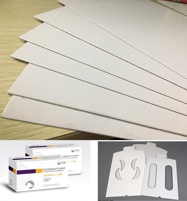 Coated Paperboard White Back Duplex Board Sheet / Roll 250gsm ~ 450gsm