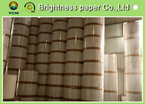 China High Grammage File Board Paper , Smooth Surface Clay Coated Printer Paper supplier