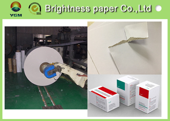 China Coated Duplex Board With White Back , White Paper Board 250gsm 700 * 1000mm supplier