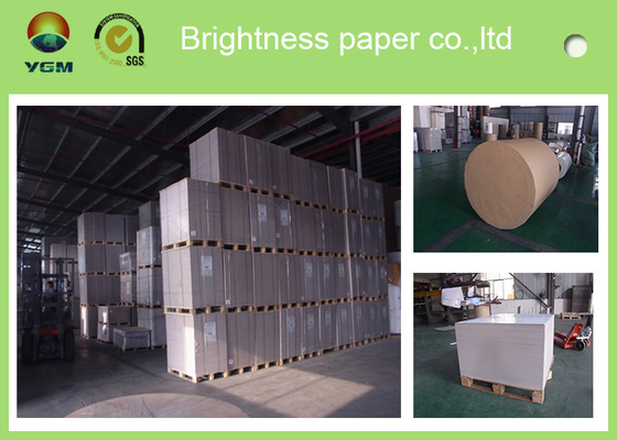China Anti Curl Strong Stiffness Coated Board Paper Sheets 300gsm Thickness supplier