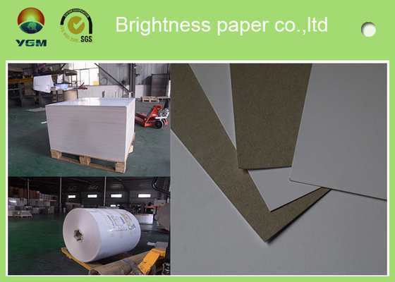 China 230g - 450gsm Grey Back Duplex Paper Board In Roll And Sheet SGS Certified supplier