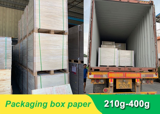 Packaging Box Paper