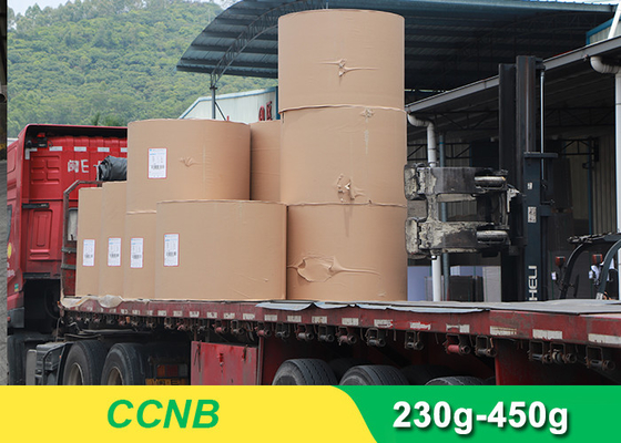 China CCNB Coated Board Paper Grey Back For Making Boxes Good Stiffness supplier